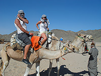 Výlet na poušť